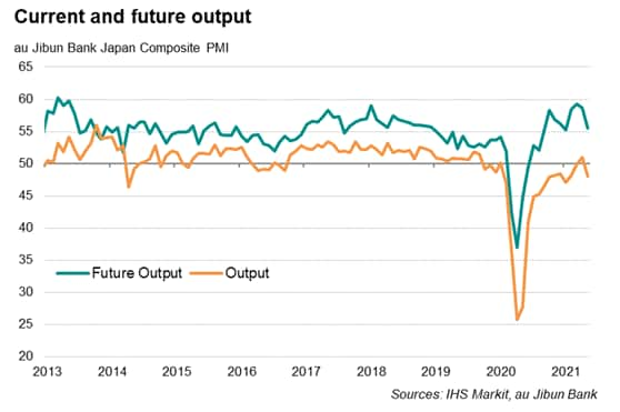 Japan PMI future output expectations and output