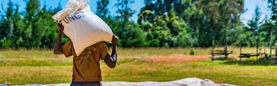 Food insecurity in Sub-Saharan Africa | IHS Markit