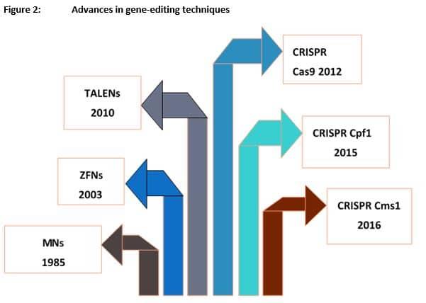 advances in gene editing graph