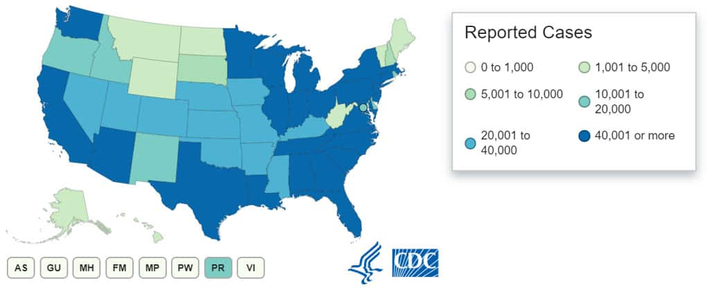 COVID-19 cases in the US by states